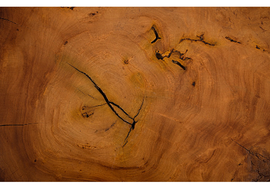 Picture of MAI THENG BURLED WOOD SIDE TABLE